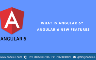 Angular 6 Feature